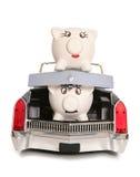 Mr piggy bank in boot of car