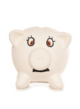 Mr piggy bank. Studio cutout royalty free stock photos