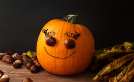 Mr. pumpkin Royalty Free Stock Photo