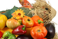 Mr. scarecrow with vegetables Royalty Free Stock Images