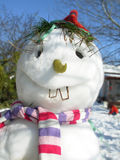 Mr.snowman Stockbild