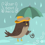 Mr Sparrow with Umbrella. The vector illustration of funny cute bird for games, ui, tablets, smart phones Royalty Free Stock Image