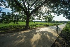 Road way to another country side, Mrauk u Myanmar royalty free stock photos