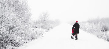 Mère avec le landau dans l'hiver Photographie stock