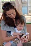 Mère et bébé choyant l'petit animal de cobaye Images libres de droits