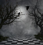 mörk plats Royaltyfri Foto