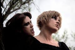 mörka skogkvinnor Fotografering för Bildbyråer