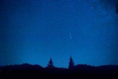 Mörker - blå natthimmel ovanför gåtaskog Arkivfoto