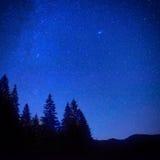 Mörker - blå natthimmel ovanför gåtaskogen Arkivfoton