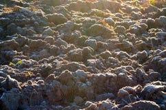 Mroźna ziemia zaorany pole obrazy stock