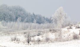 Mroźna zima scena Zdjęcie Royalty Free