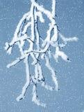 mroźny śnieżny drzewo ilustracji