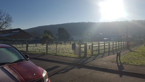 Mroźny natury outdoors słońce świeży Zdjęcie Stock