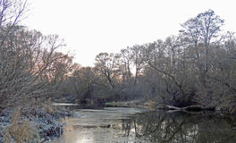 Mroźny ranek w Listopadzie spadek póżno Rzeka Obraz Stock