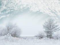 Mroźny zima dnia krajobraz z śniegiem zakrywał drzewa i pięknego niebo obraz royalty free