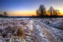 Mroźny Zima krajobraz przez pole przy wschód słońca zdjęcie stock