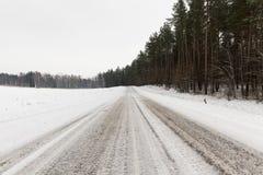 mrożona wymienionego stosowanie stabilizatora nigth drzew drogowej uliczna śniegu zima Zdjęcia Stock