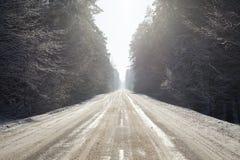 mrożona wymienionego stosowanie stabilizatora nigth drzew drogowej uliczna śniegu zima Zdjęcie Stock