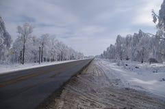mrożona wymienionego stosowanie stabilizatora nigth drzew drogowej uliczna śniegu zima fotografia stock