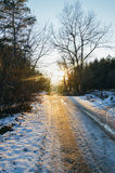 mrożona wymienionego stosowanie stabilizatora nigth drzew drogowej uliczna śniegu zima Obraz Stock