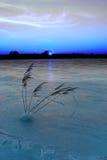 mrożone, lake Zdjęcie Royalty Free