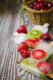 mrożone owoce Obraz Stock