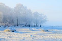 mroźna krajobrazowa zima Zdjęcie Stock