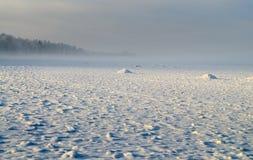 mroźna krajobrazowa zima Zdjęcia Royalty Free