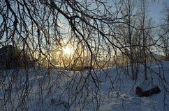 Mroźny krajobraz w szwedach Lapland Fotografia Royalty Free