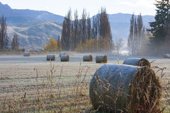 Mroźny Rolny ranek Fotografia Stock