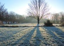 Mroźny zima krajobraz Zdjęcie Stock