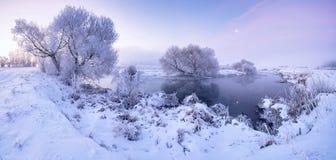 Mroźny zima ranek Fotografia Stock