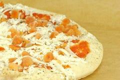 mrożona pizza Fotografia Royalty Free