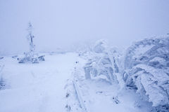 mrożone krajobrazu Zdjęcia Stock