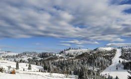 mroczny dzień niebieski oddział stać się drzew zimy śnieżną nieba Fotografia Stock