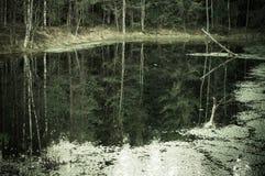 Mroczny jesień las i jezioro, odbicie w wodzie Fotografia Stock