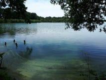 Mroczny jezioro Zdjęcie Stock