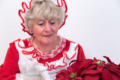 Mrs Claus attends to plant Stock Image