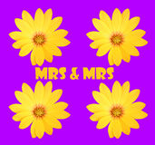 Mrs & Mrs Stock Photos
