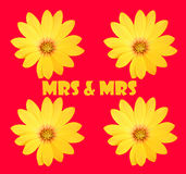 Mrs & Mrs Royalty Free Stock Photography