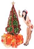 Mrs. Santa Royalty Free Stock Photo