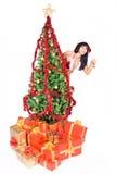 Mrs. Santa Stock Images