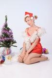 Mrs. Santa Clause Royalty Free Stock Photo
