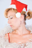 Mrs. Santa Clause Stock Photography