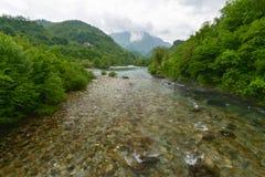 Mrtvica flod, Montenegro Arkivfoton
