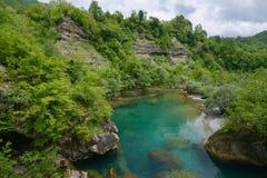 Mrtvica flod, Montenegro Royaltyfri Foto
