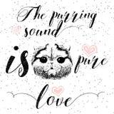 Mruczeć dźwięk jest czystym miłością, kartka z pozdrowieniami i motywacyjnym wycena dla zwierzę domowe kochanków z typograficznym Zdjęcia Stock