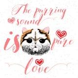 Mruczeć dźwięk jest czystym miłością, kartka z pozdrowieniami i motywacyjnym wycena dla zwierzę domowe kochanków z typograficznym Obrazy Royalty Free