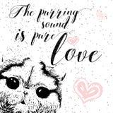 Mruczeć dźwięk jest czystym miłością, kartka z pozdrowieniami i motywacyjnym wycena dla zwierzę domowe kochanków z typograficznym Fotografia Stock