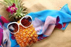 Ms ananas Fotografia Stock